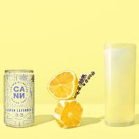 Lemon Lavender 6pk