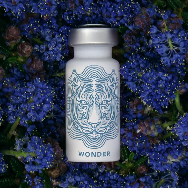 WONDER - 3pk